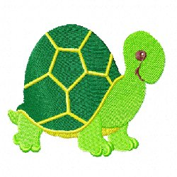 Broderie fil tortue 1