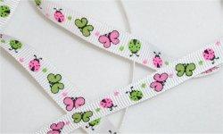 Papillons couleurs /  fond blanc