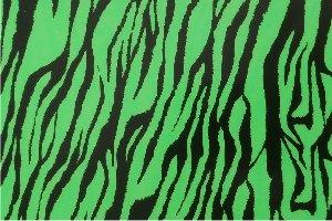 Flex thermocollant Zebre vert noir