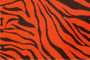 Flex thermocollant Zebre orange noir