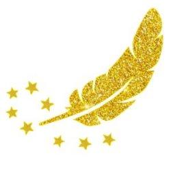 Appliqué Flex plume étoile / 10 cm