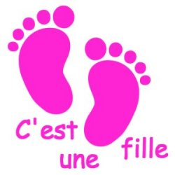 Appliqué Flex pieds bébé c'est une fille 10 cm