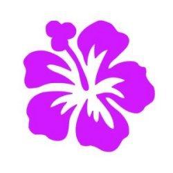 Appliqué Flex fleur hibiscus / 9 cm