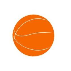 Appliqué Flex ballon basket / 9.5 cm