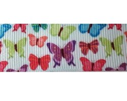 Ruban gros grain papillon 22 mm (12)