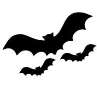 Appliqué Flex Hallowenn chauve-souris (lot3) / 10 et 3 cm
