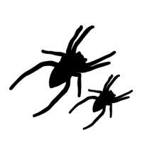 Appliqué Flex Halloween araignée 2 (lotde2) / 6 et 4 cm