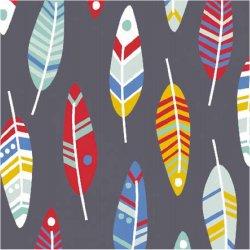 Tissu coton plumes couleurs fond gris